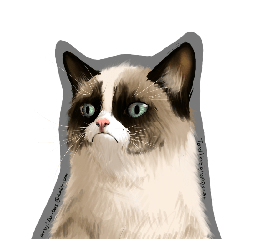 grumpy_cat_is_grumpy_by_nut_bar-d5oh6g4