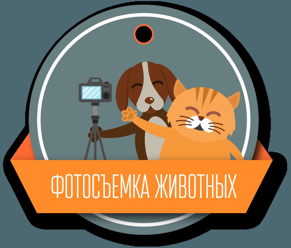 fotosemka-zhivotnyh-2x